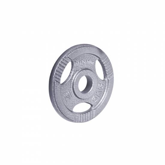 Disc de fonta Olimpic inSPORTline Hamerton 5 kg