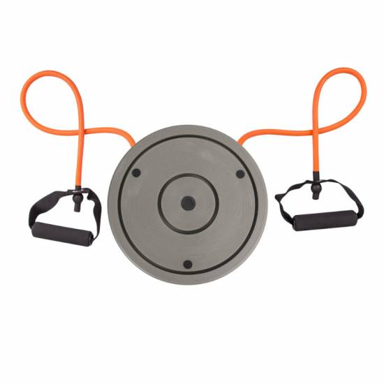 Disc magnetic inSPORTline Rotana Digital Twist