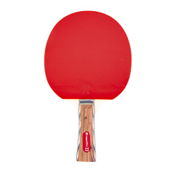 Paleta de tenis de masa inSPORTline Shootfair S4