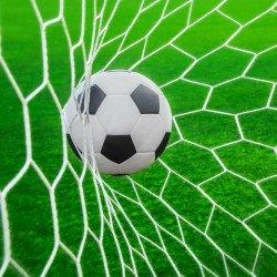 Plasa poarta fotbal SPARTAN 244 х 110 х 130 см, Alb
