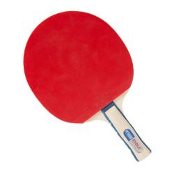 Paleta tenis de masa JOOLA Python