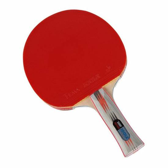 Paleta tenis de masa JOOLA DANNY ACTION