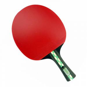 Racheta pentru tenis de masa JOOLA Mega Carbon