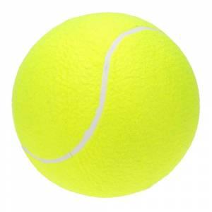 Mingi de tenis SPARTAN GARDEN