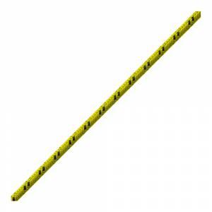Cordelina BEAL - 5 mm